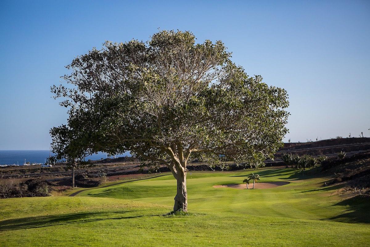 16º Circuito Premium 2019 Gambito Golf